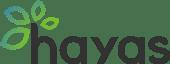 inbound-marketing-b2b-hayas